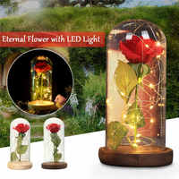Enchanted ROSE Glass Dome Real Flower Eternal Flowers With Led Light Home Decoration Crafts Glass Cover