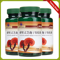 Ganoderma Lucidum, Lingzhi, Wild reishi Spore Powder, Chinese herbal medicine, Anti-cancer and anti-aging