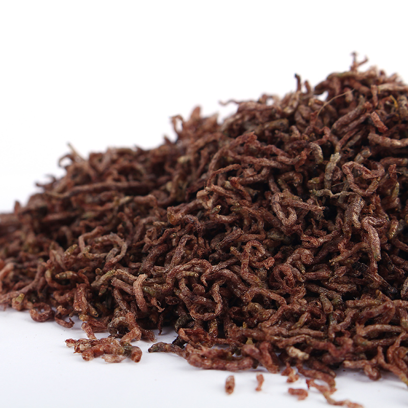 Dried frozen blood worms Platax teira fish food small betta fish meal 100g in Aquariums Tanks from Home Garden