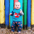 New baby clothing set baby boys clothes long sleeve cartoon t-shirt + pants 2pcs suit cotton baby boy newborn clothing set DS40