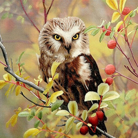 Diy Diamond Painting Animal Owl Rhinestone Decorative Stickers Animals Handmade Needlework Diy Cross Stitch Kit Beadwork