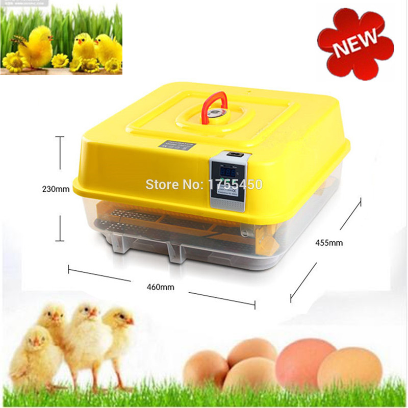Mini Eggs Hatchery Machine Auto Hatcher Egg Incubator For Hatching 48 Eggs Poultry China Brooder все цены