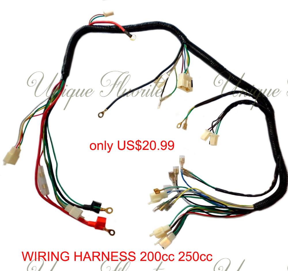 Quad Wiring Harness 200 250cc Chinese Electric Start