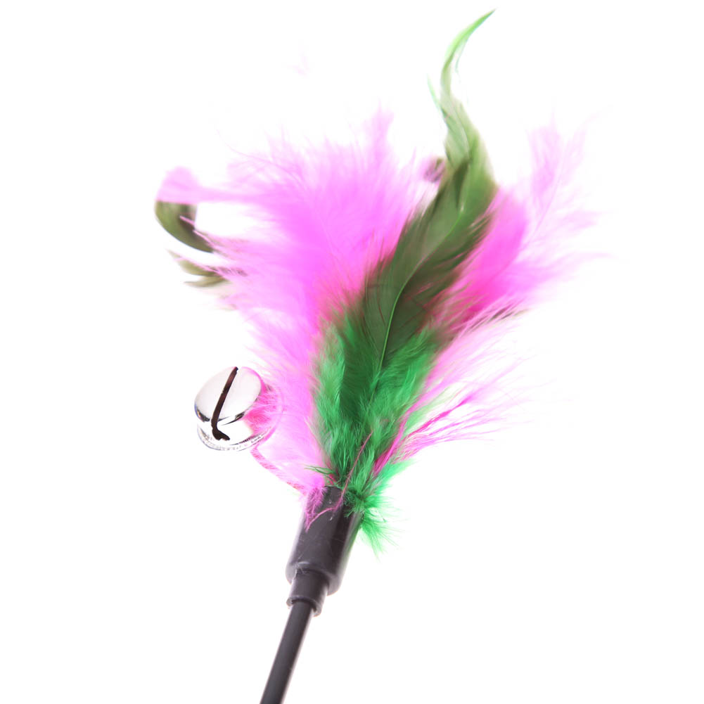 5pcs cat toys soft colorful cat feather bell rod toy for cat kitten funny playing interactive toy pet cat supplies 5Pcs Soft Colorful Cat Feather Bell Rod Toy HTB14rGzPFXXXXXmXpXXq6xXFXXX6