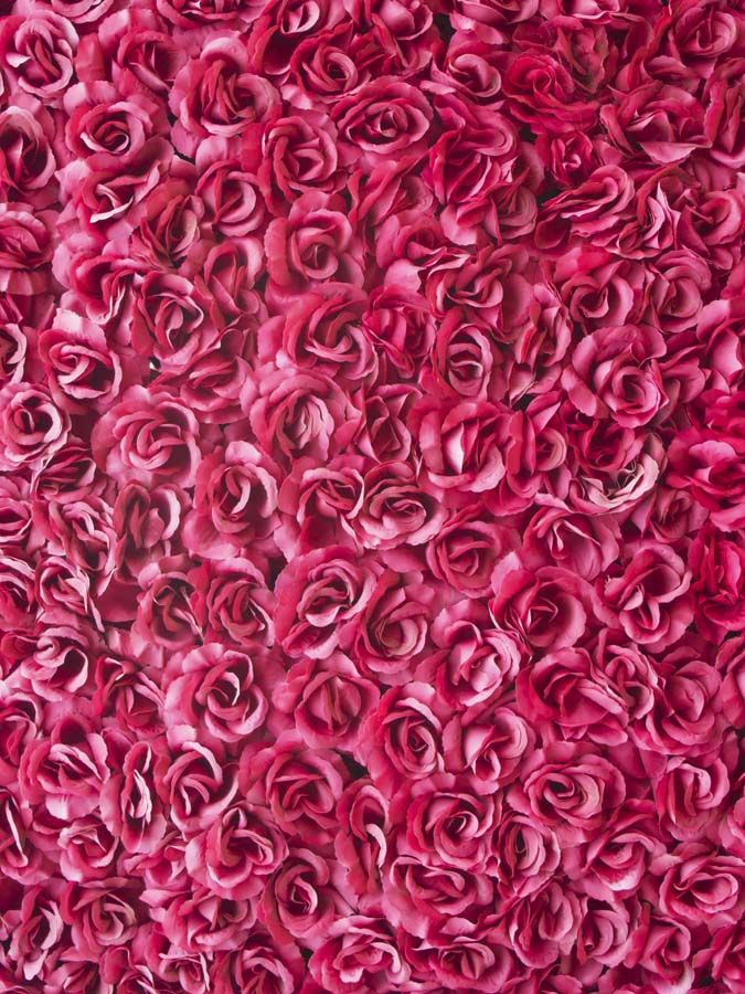 5x7ft hot pink rose flowers bouquet wall blossom custom photo studio 5x7ft hot pink rose flowers bouquet wall blossom custom photo studio backdrop background vinyl 220cm x 150cm in background from consumer electronics on mightylinksfo