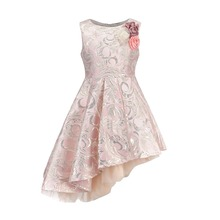 BRWCF 2017 New Autumn&Winter Children Clothes Fashion Kid Dress For Baby Girls Princess Dress  for Party And Wedding 3-12 Years nicbuy girl s autumn winter dress 2017 new children add velvet and lace princess fashion dress red blue
