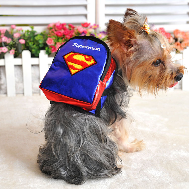 Back Packs For Small Dogs