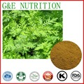 100% Natural a base de hierbas extracto de artemisia annua con 40% Artemisnin