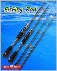 1 fishing rod