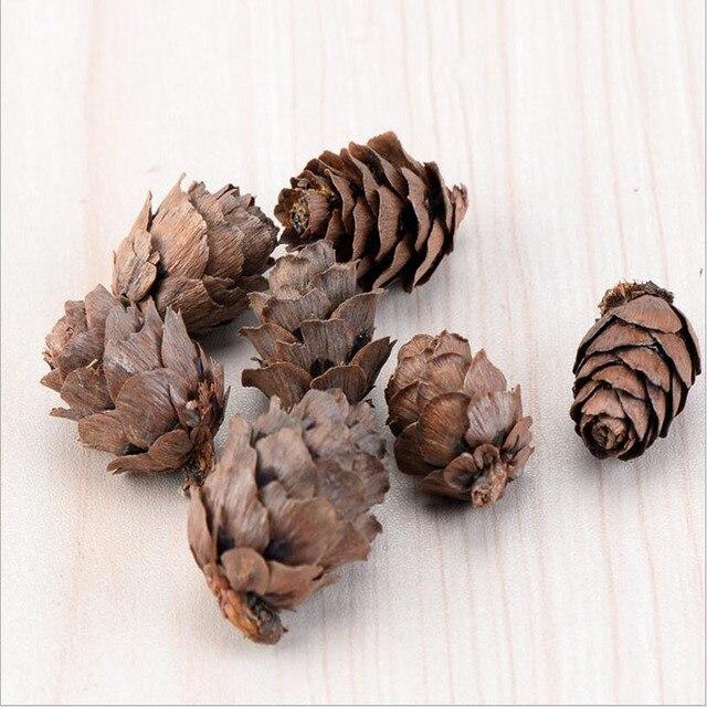 Delightful In Miniatura, Frutta Di Natale Qualità Larice Pigne, Ornamenti Artigianali  Di Montaggio FAI DA