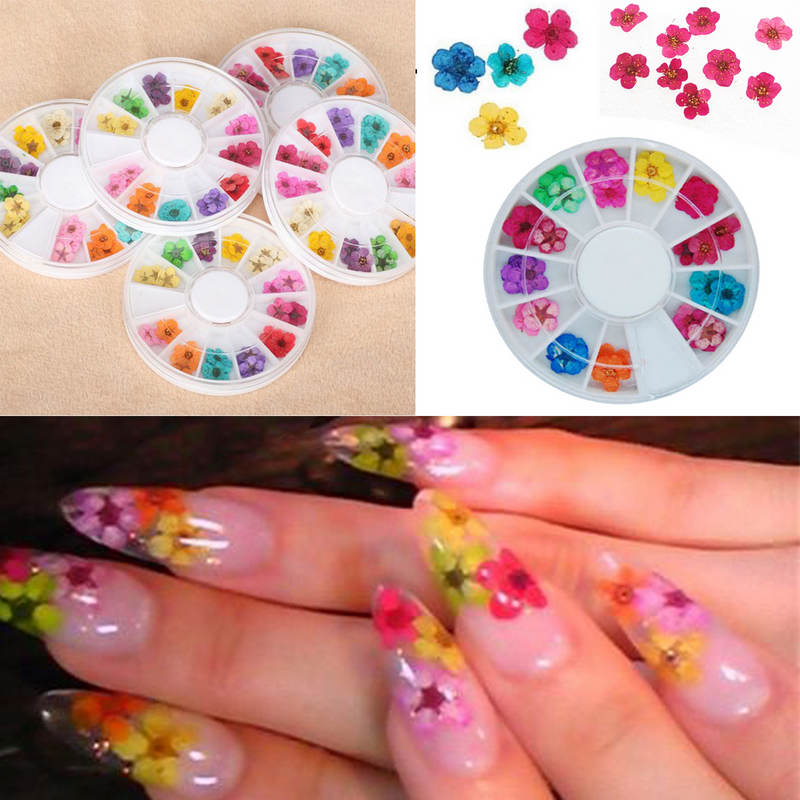 36Pcs Real Nail Dried Flowers Nail Art Decoration DIY Tips with Case ...