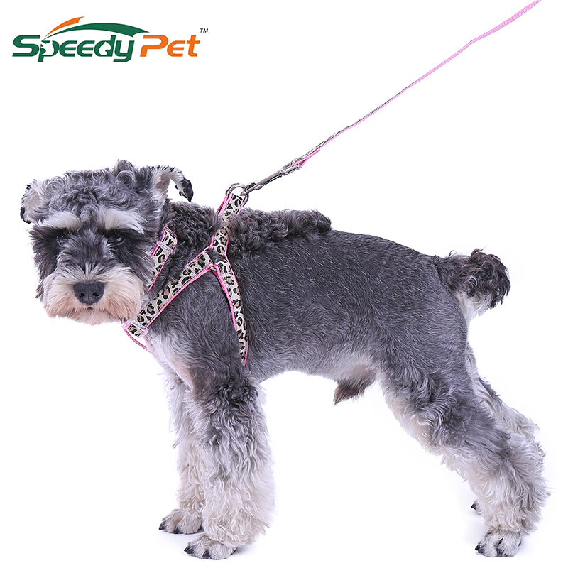 Cheap Wholesale!!Pet Products Dog Collar Lead Set Leopard Adjustable Dog Leash Puppy Harness Durable Dog Accessories Cat Collar
