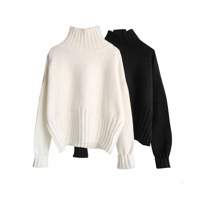 Basic Female Sweater 5