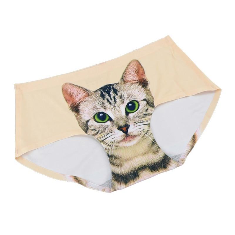 fotki kobiecych kotów