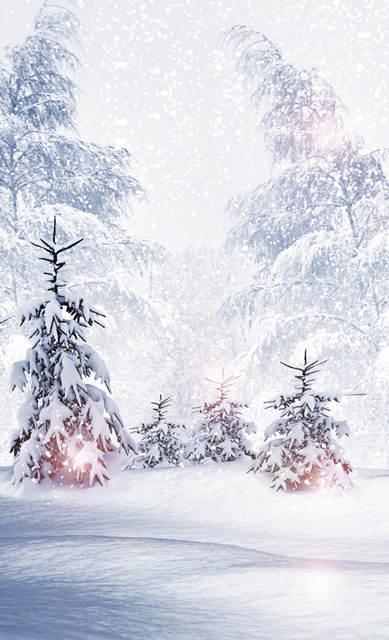 Christmas Background Portrait.Huayi Christmas Photography Backdrop Scenery Custom Photo