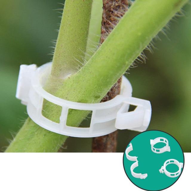 50pcs Tomato Clips Trellis Garden Plant Flower Vegetable Binder Twine Plant Support Greenhouse Clip Supplies