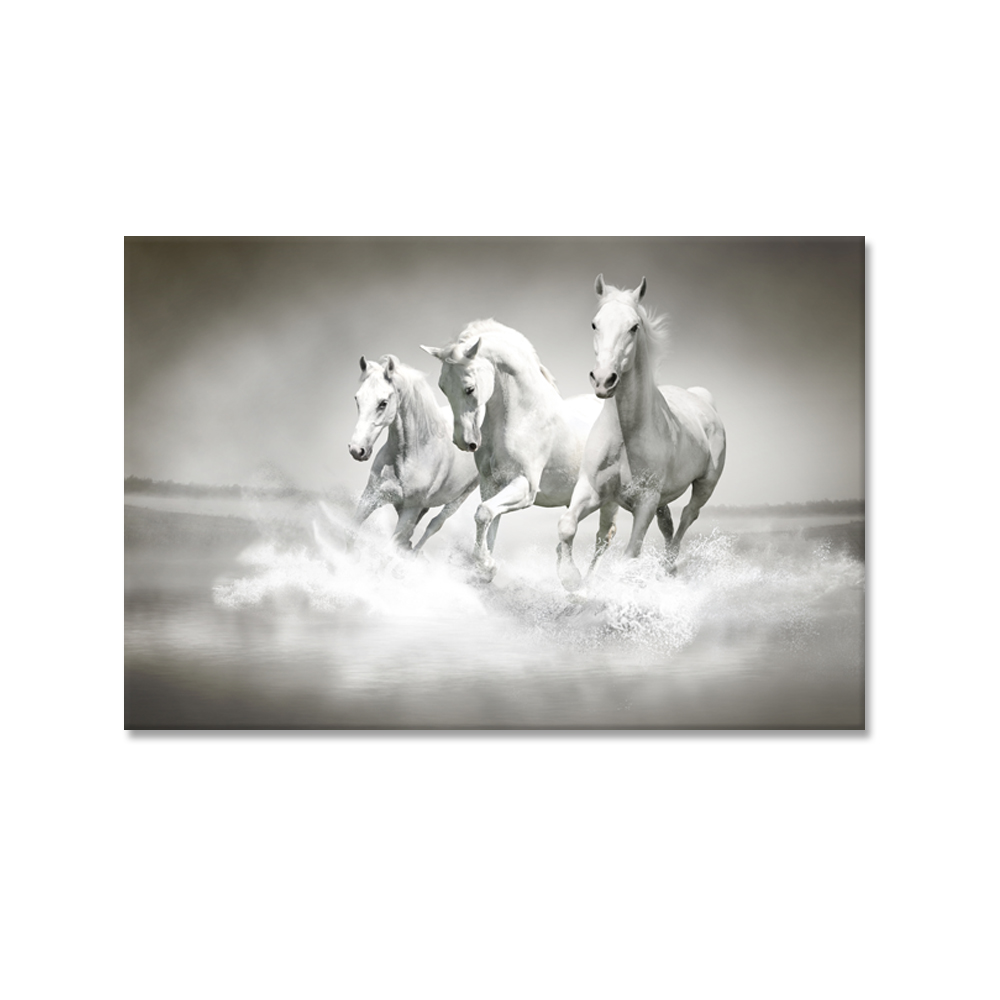 wild horses wall art amp canvas prints wild horses - 850×631