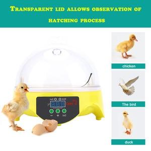Image 4 - Digital 7 Eggs Incubator For Egg Broedmachine Chicken Duck Quail Birds Egg Hatcher Electronic Incubator Tools