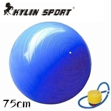 цена на free shipping Hot Selling High Quality Home Balance Trainer Yoga Pilates Fitness GYM Exercise Ball with Pump Shipping By CPAM