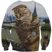 PLstar Cosmos Women/Men 3d Print Big Cat Destroy Earth Sweatshirts Pullover O-neck Long Sleeve Animal Sweatshirt Unisex Tops