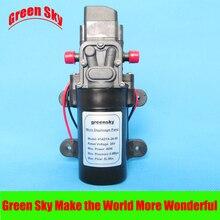 5L/MIN 60W Gardening sprayer or Car wash High Pressure 24V DC Diaphragm Pumps