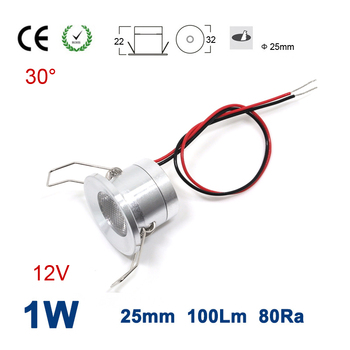 24pcs 1W 100Lm 12V 80Ra Hole size 25mm 30 Degree Mini Led Spotlight for Garden Outdoor Party Lighting CE RoHS