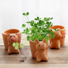 Gardening Potted Succulents Mini Ceramic Flower Plant Desktop Pot