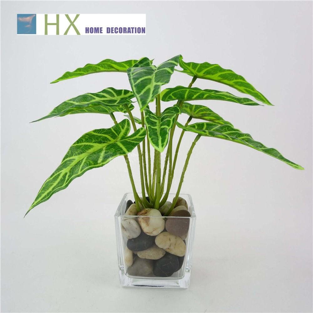 2015 New(10 pcs/lot)Artificial plant,12 fork spring taro leaves,high simulation,home decoration,plant wall fittings