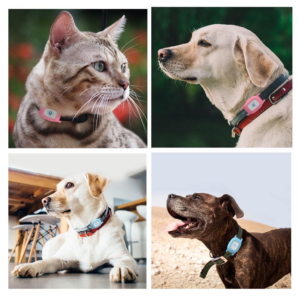 Smart GPS Pet Collar Tracker 3