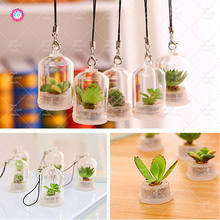 1Pcs/Bag mini succulent bonsai plant pendant, creative plant potted, and carry home garden decorative floral plant gifts(China)