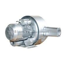 2RB420-7HA31 1.5KW/1.75kw однофазный 1AC Двойной Этап высокого давления/вакуумный насос для аквакультуры и очистки воды/ЧПУ
