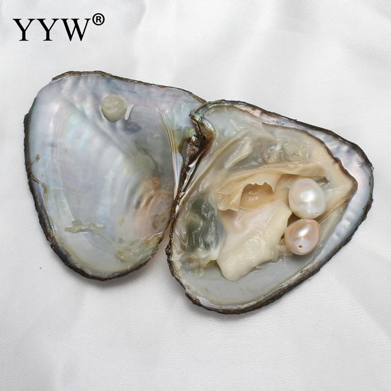 Surprise Gift Freshwater Vacuum-pack Oyster Wish Pearls 10-11mm Pearl Mussel Shell with Pearl Inside Beads For Jewelry Making