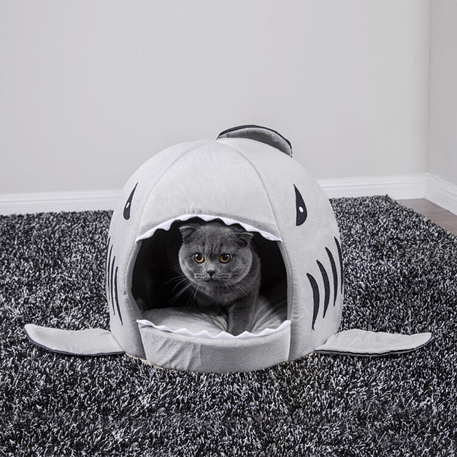 Shark Shaped House for Cats 1