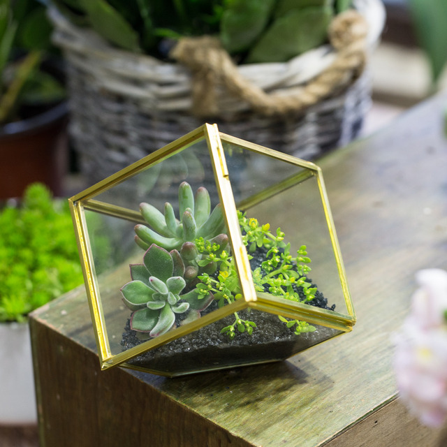 3 9inches Copper Brass Squares Inclined Cube Glass Geometric Terrarium Box Succulent Plant Moss Container Planter