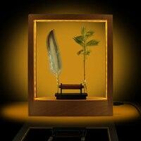 LED Optical Illusion Sculpture Slow Motion Picture Frame Lightweight Object Slow Motion Frame Time Frame Night Light Decor
