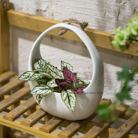 Small White Round Hanging Ceramic Flower Pot Basket Vertical Garden Decoration Pot Succulents Plants Holder Wall