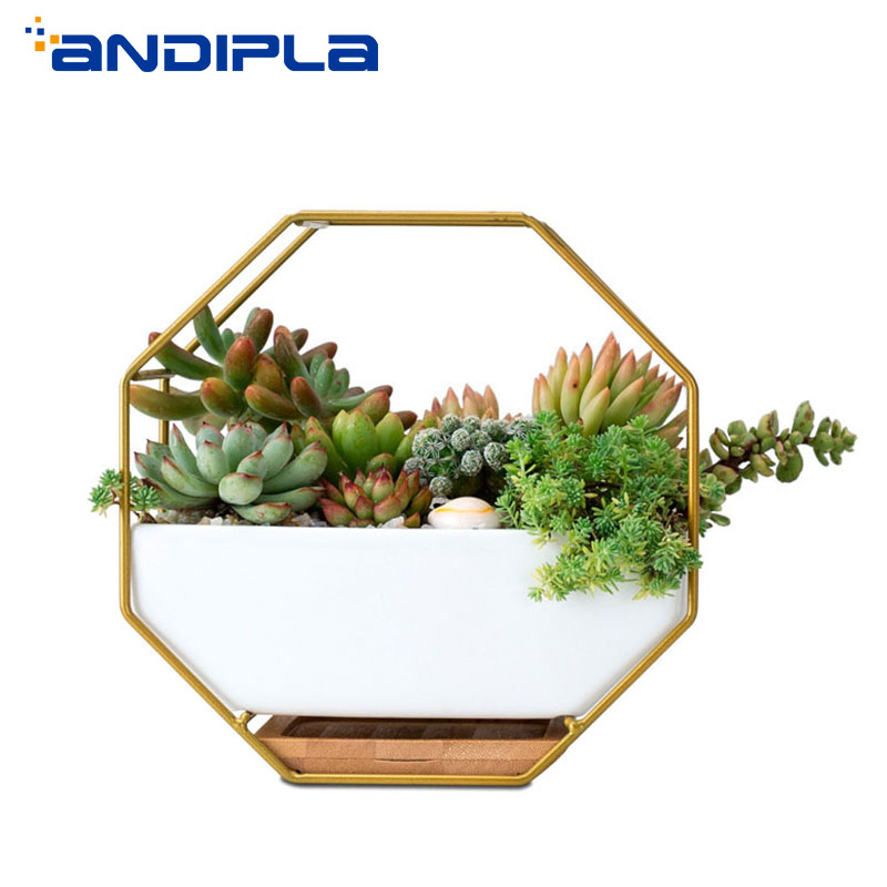 Creative Wall Vase Iron Art Plant Holder Ceramic Hanging Flower Pot Succulents Bonsai Pots Wall Planter Home Office Decoration
