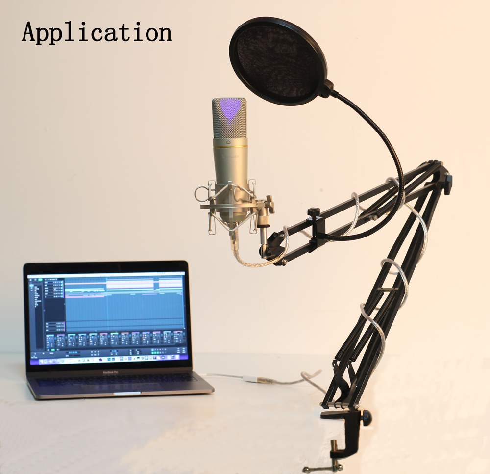 Professional USB Recording Microphone For Computer Recording Vocals Voice In Direct Broadcasting Room Karaoke Kit Youtuber Mic