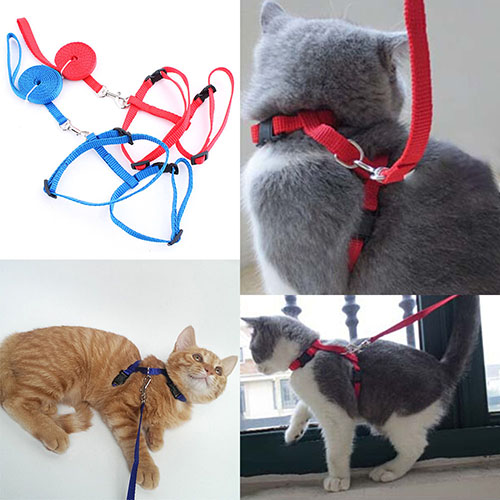 Adjustable Nylon Cat Puppy Pet Harness Collar Lead Leash Traction Safety Rope