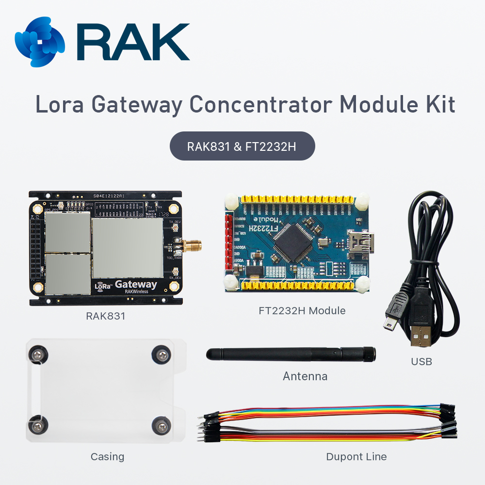 IOT Lora Gateway Concentrator Module Kit RAK831 LoraWAN Module Base on SX1301 Chip Wireless Spread Spectrum Transmission Q138