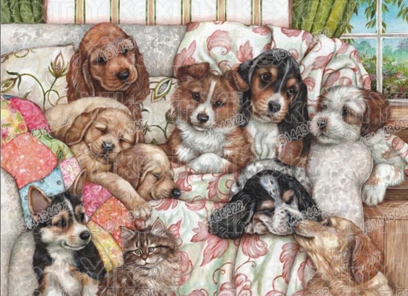 5D DIY Diamante Bordado Sofá & Dog circular Completa Diamante do Ponto da Cruz de 2019 Animais Decoração de Casa