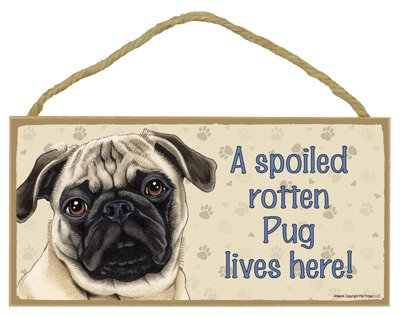 brown/tan Color 2019 Latest Design Meijiafei A Spoiled Rotten Pug Lives Here Wood Sign Plaque 5 X 10