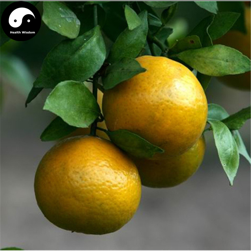 Buy Gong Orange Fruit Semente 100pcs Plant Citrus Tree For Fruit Sweet Orange