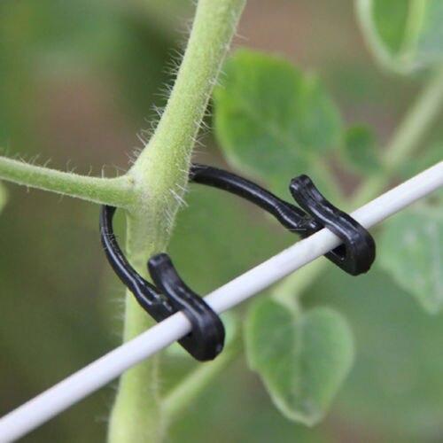 Vegetable Binder Twine Plant Support 100Pcs Type Tomato Clips Trellis Garden  Vine Bound Cord Plant Cages Supports In Plant Cages U0026 Supports From Home ...