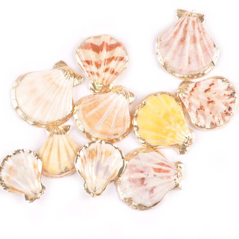 Natural Fans Seashells For Jewelry Plated Rose Gold Shells Bracelet Pendant Home Decor DIY Charm Accessories 35-45mm 5pcs Tr0312