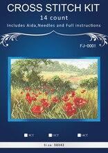 Schöne Rote Blumen Kreuzstich DMC Kreuzstich DIY 14CT Kreuzstich Kit Handgemachte Stickerei Handarbeiten