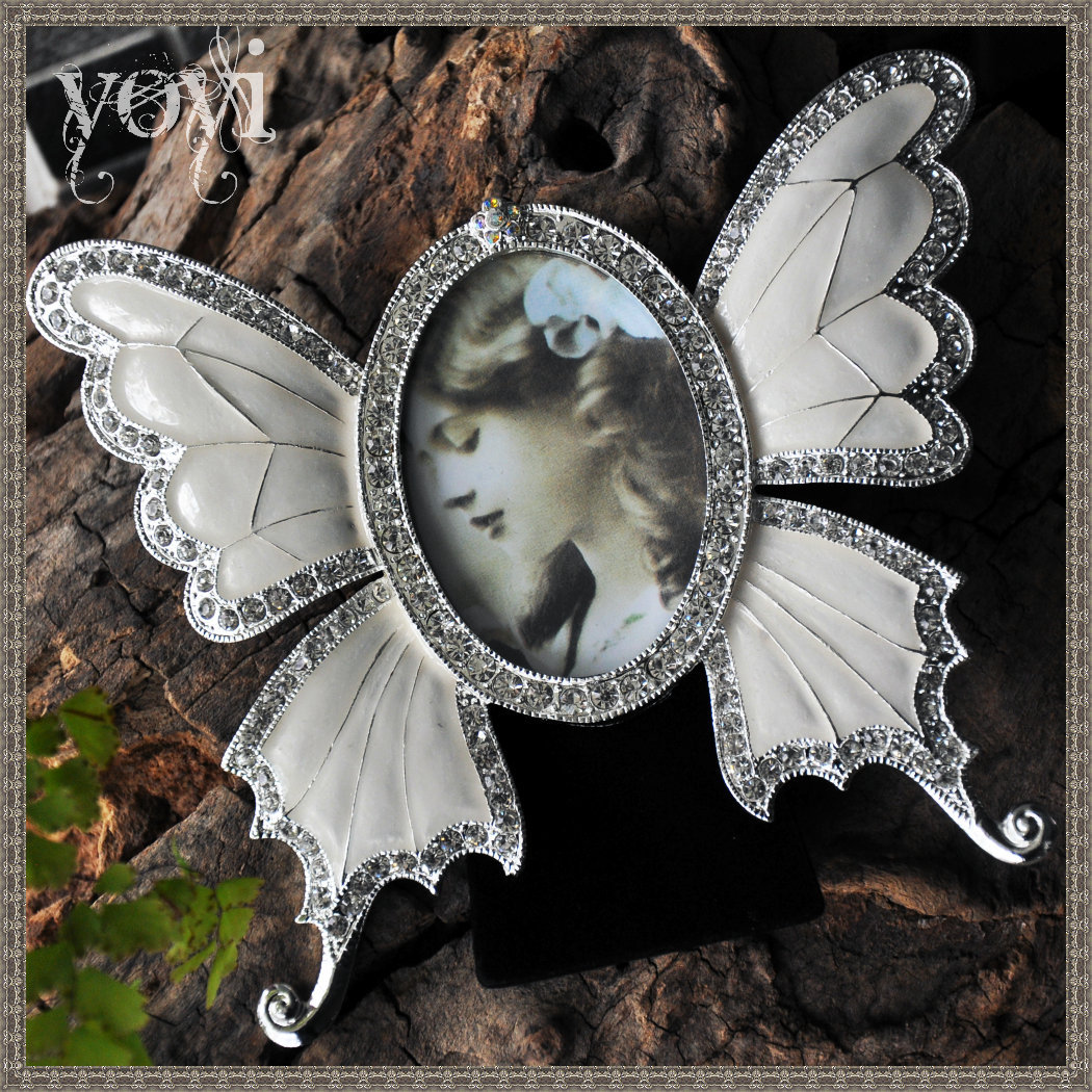 Schmetterling Classic Europe Stil Bilderrahmen Retro Koreanische ...