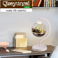 Qiseyuncai Minimalist eye protection LED learning hydroponics plant lamp study bedroom bedside glass spherical table lamp.