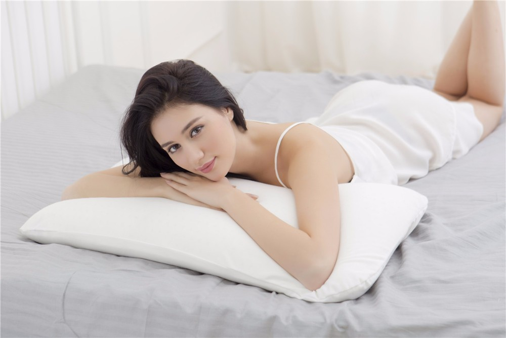 Reine/taille Standard 100% oreiller en mousse de Latex naturel avec couverture intérieure en Polyester et couverture en bambou et zippée dans un sac en PVC