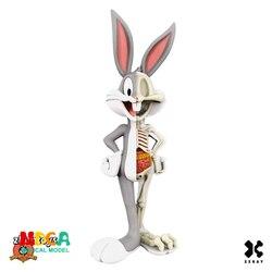 Bugs Bunny 4D XXRAY maestro poderoso Jaxx Jason Freeny Anatomía de dibujos animados de